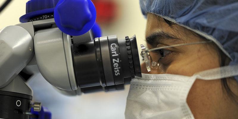 IVF microscope
