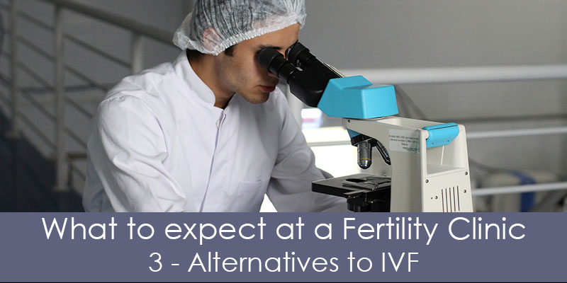 alteratives to ivf